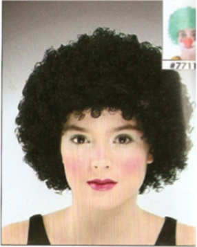 Picture of Clown Wig Dark Green