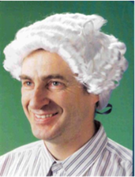 Picture of Judges Wig