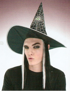 Picture of Witch Hat Hair & Silver Webs