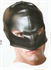 Picture of Gimp Mask