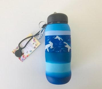 Swirl water bottle